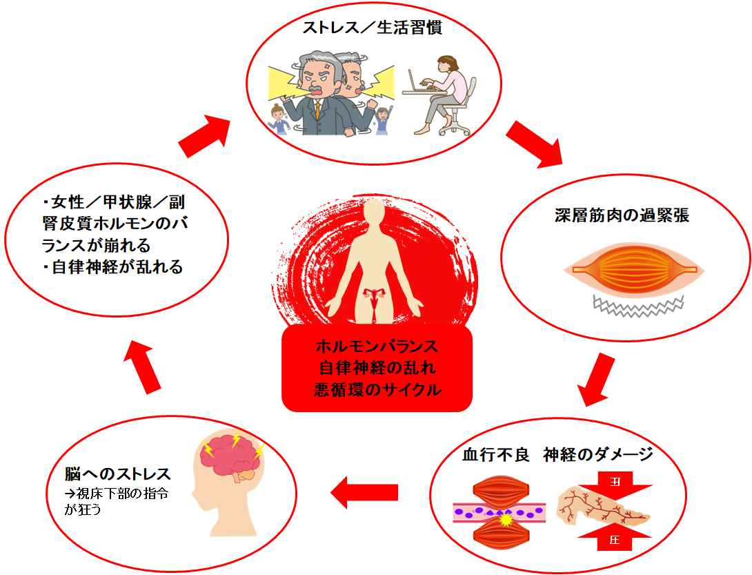 PMS悪循環サイクル